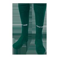 ASTR FOOTBALL SOCKS(GRN)